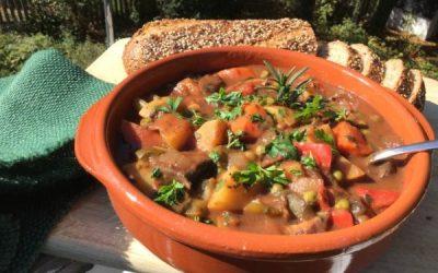 Hearty Winter Stew