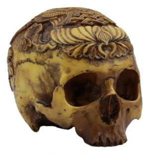The Sculpted Skulls