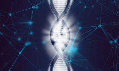 DNA can be influenced by words