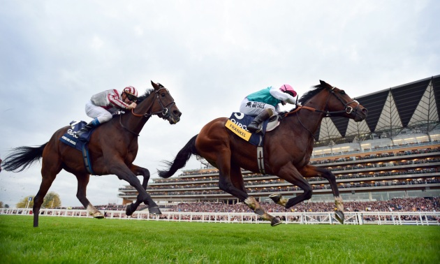 Horse Racing Tips | Tips for Today's Horse Racing
