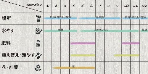 schedule_Haworthia