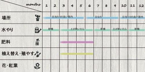 schedule_Sedum