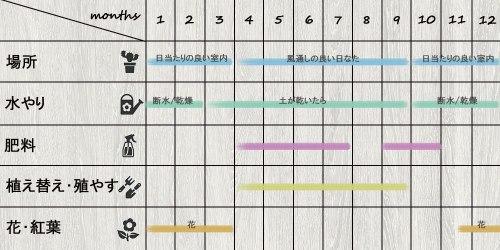 schedule_aloe