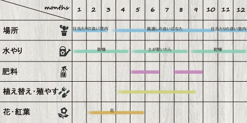 schedule_Mammillaria