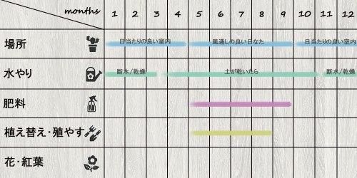 schedule_Sansevieria