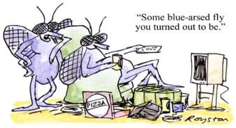 a cartoon about blue-arsed flies