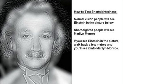 Do You See Einstein Or Monroe?