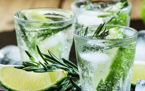 Gin health benefits
