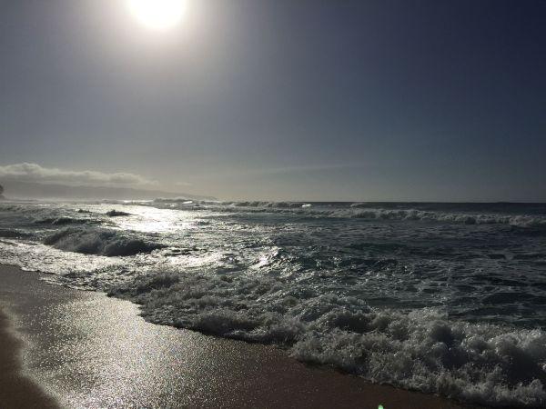 Oahu North Shore Waves Hawaii
