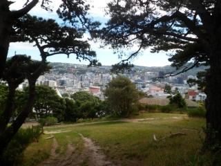 Gürtel am Mount Victoria