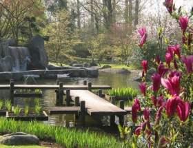 Hasselt Helemaal zen in de Japanse tuin