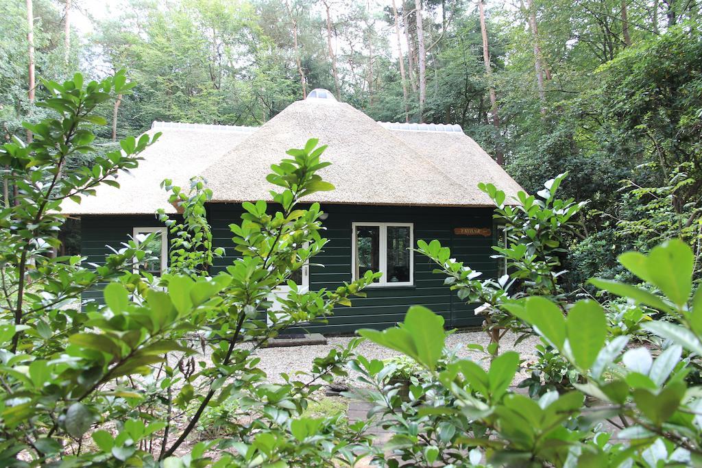 huisjes in het bos: vakantiehuis t musje in epe
