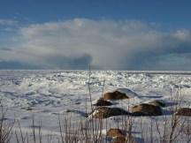 Juminda, 2011 talv