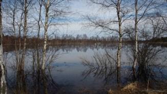 Luiged ja järv
