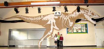Primary school science workshops on fossils, rocks ...
