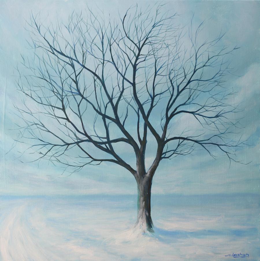 snow swept tree an