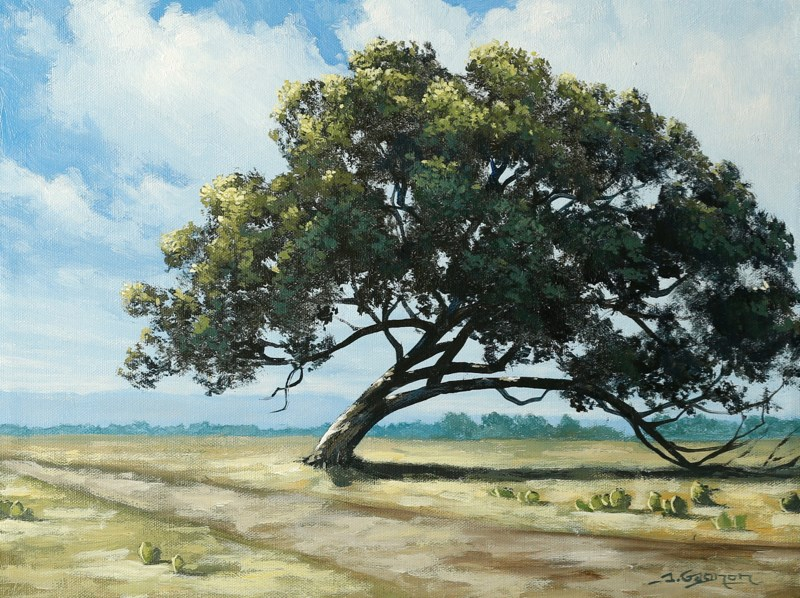 texas tree an acrylic