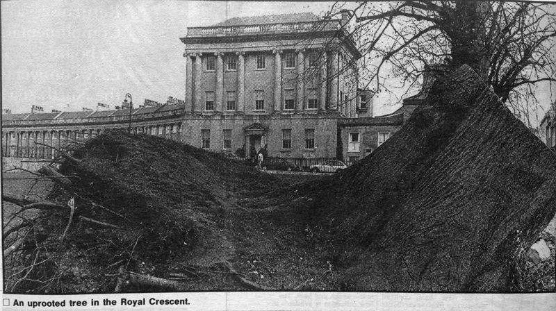 A tree is uprooted at The Royal Crescent, Bath.