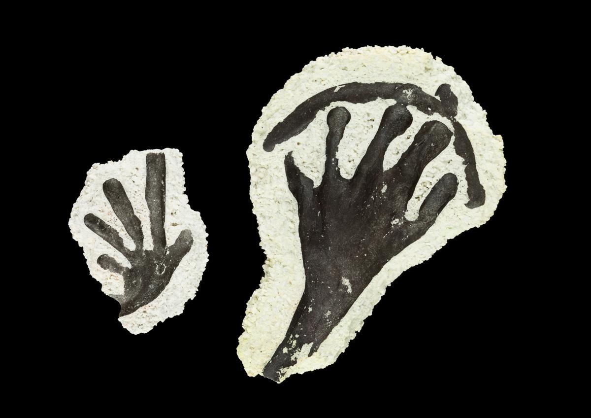 Imprints of gekko feet in ceramic fragments