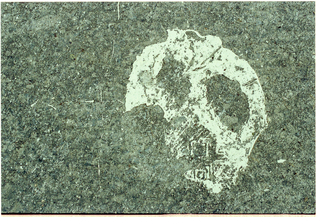 Colour photo of a paint stain on the ground which resembles the plastic mask with two eyes and a mouth.