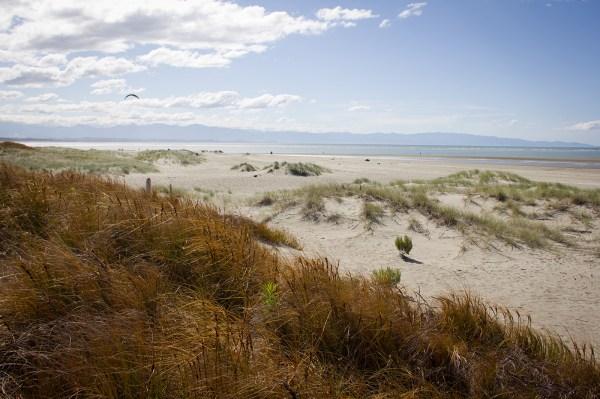 Tahuna Beach Nelson
