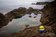 Mermaid Pool - Matapouri Beach