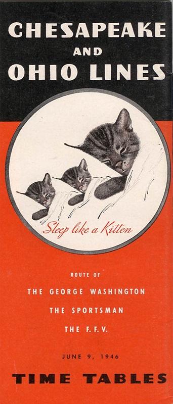 Like a Kitten