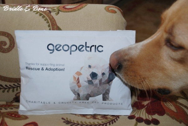 Geopetric personal dog collar