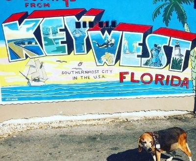 Key West with Jaxson