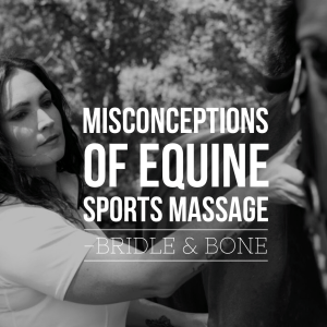 Misconceptions of Equine Sports Massage