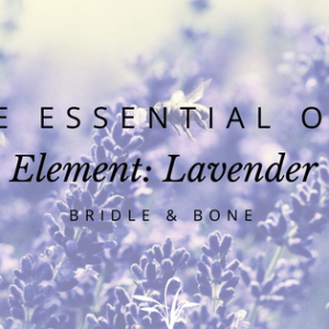 Lavender best essential oil beginners