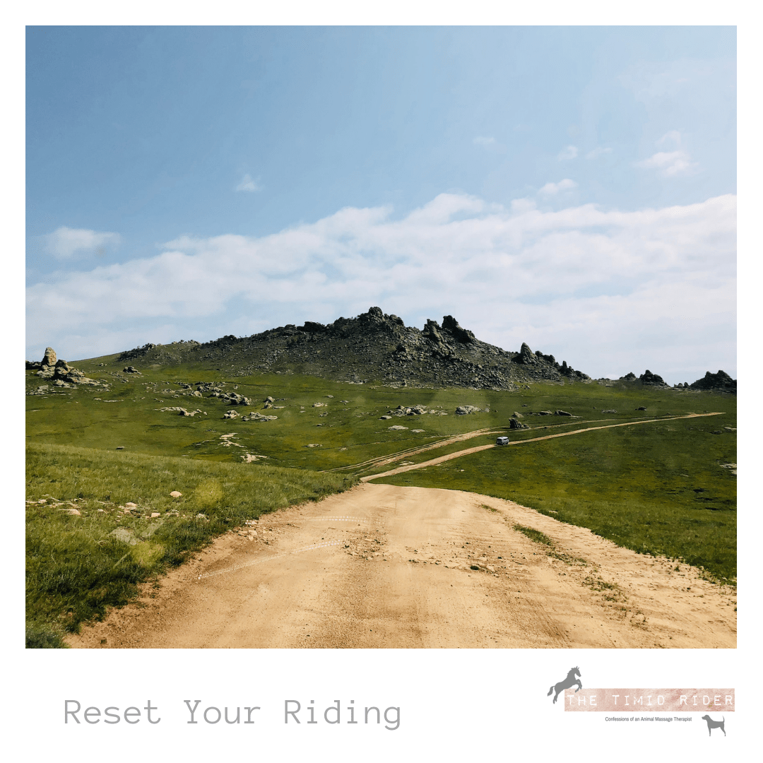 Reset Your Riding Horse