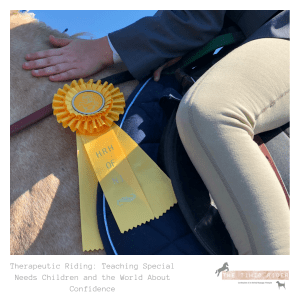 Therapeutic Riding: Teaching Special Needs Children and the World About Confidence