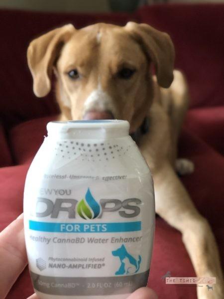 DROPS for Pets