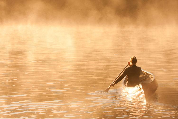 Morning light - Coulonge River, Quebec