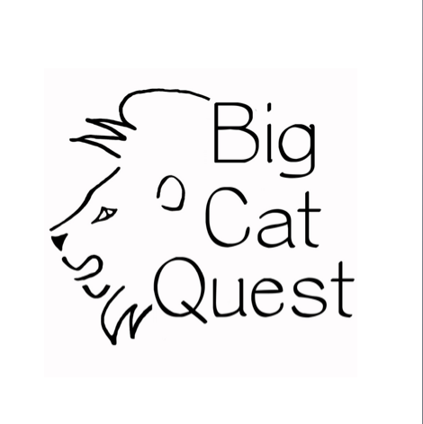 Nick Acheson's Big Cat Quest