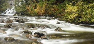 Walbran Creek