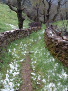 Ighil Bougueni - Randonnée 3 - Mouhamedh Ath El Hadja Saidh
