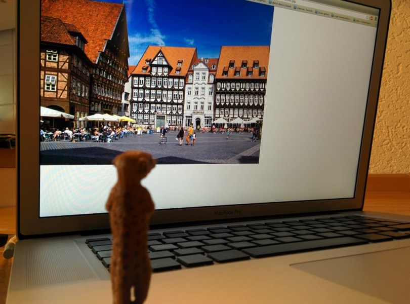 Erdmännchen vor Computer, darauf ein Bild vom Hildesheimer Marktplatz