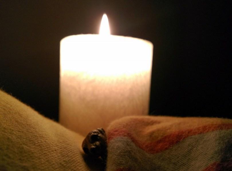 Erdmännchen unter einer Decke im Hintergrund eine Kerze