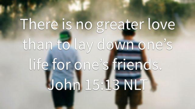 Friendships, The Longview