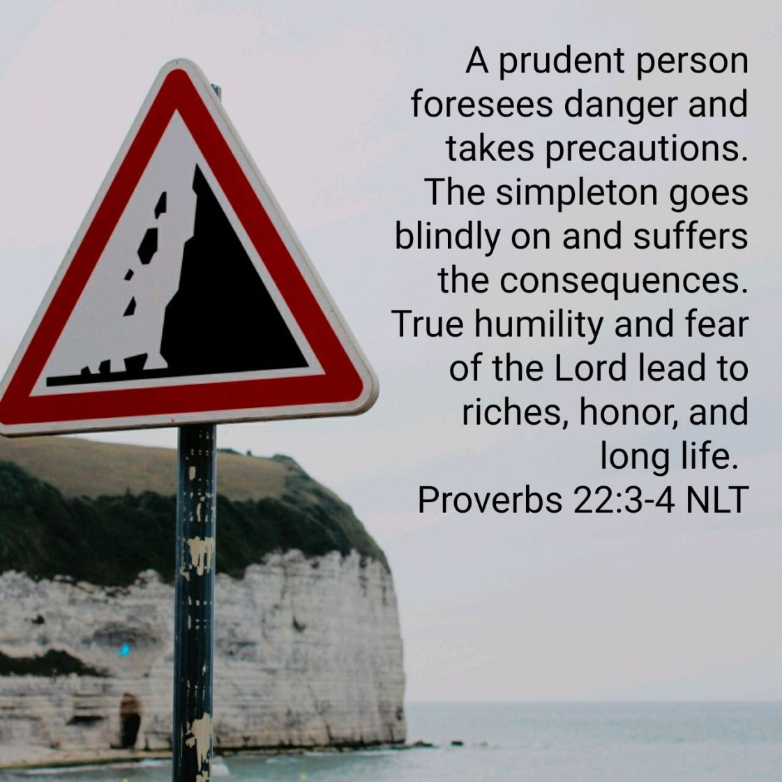 A prudent person foresees danger and takes precautions. The simpleton goes blindly on and suffers the consequences. True humility and fear of the Lord lead to riches, honor, and long life. - Proverbs 22:3-4 NLT