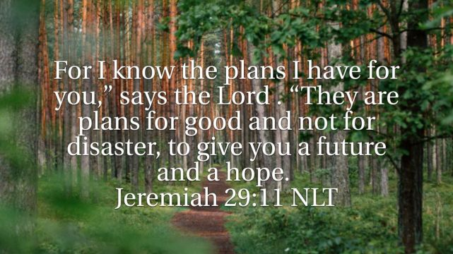 God's Plans, My Hope