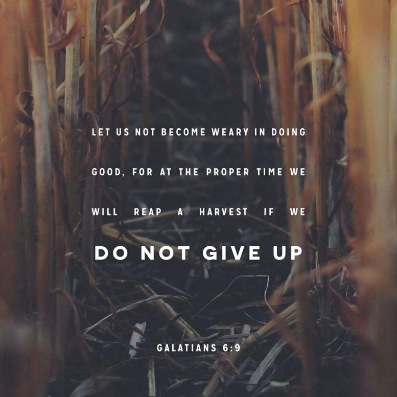 https://bible.com/bible/116/gal.6.7-9.NLT
