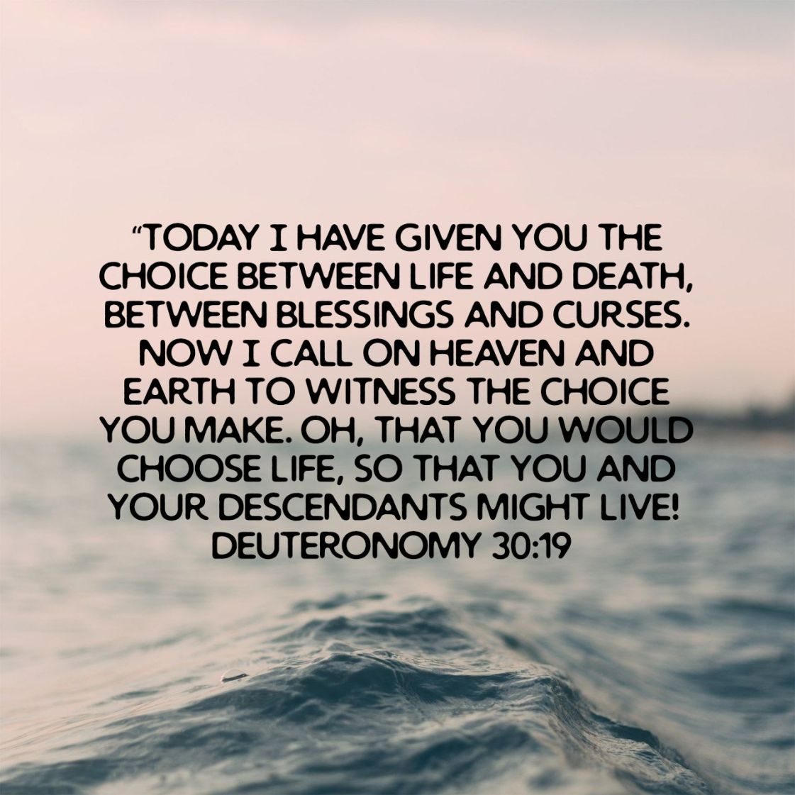"""""""Today I have given you the choice between life and death, between blessings and curses. Now I call on heaven and earth to witness the choice you make. Oh, that you would choose life, so that you and your descendants might live! - Deuteronomy 30:19 NLT"""