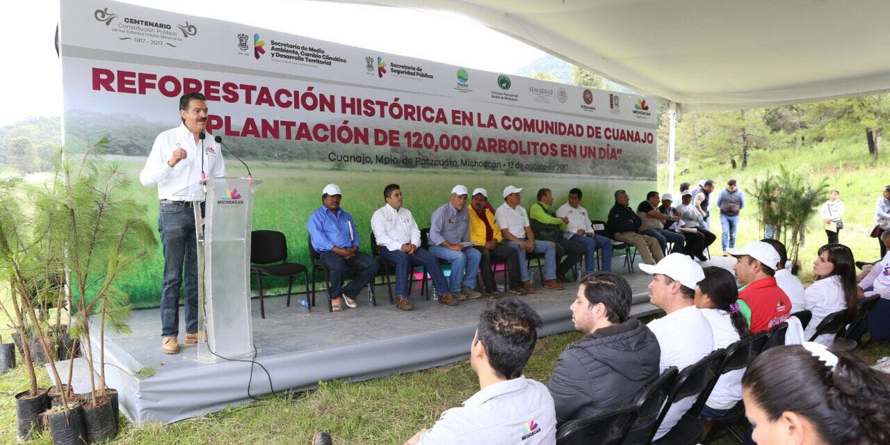 Histórica jornada de reforestación en Cuanajo: sembrados, 120 mil arbolitos