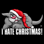 I hate Christmas, grumpy cat