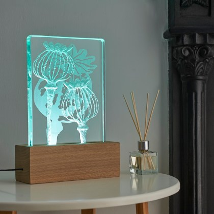 Engraved sandblasted poppies on glass oak wood table light with LED lighting by Tim Carter