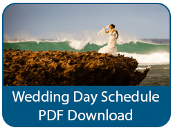 Wedding Day Publication PDF Download