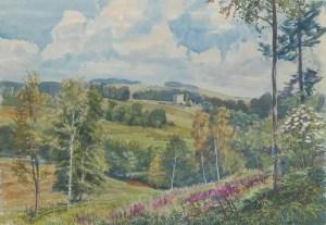 1769 Alnwick, Hulne Park wc45x67